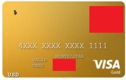 visa1603219878.jpg